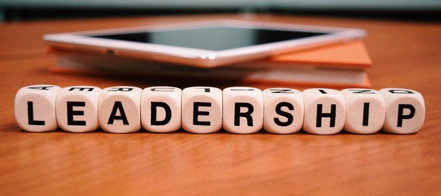 leadership-1959544_1920
